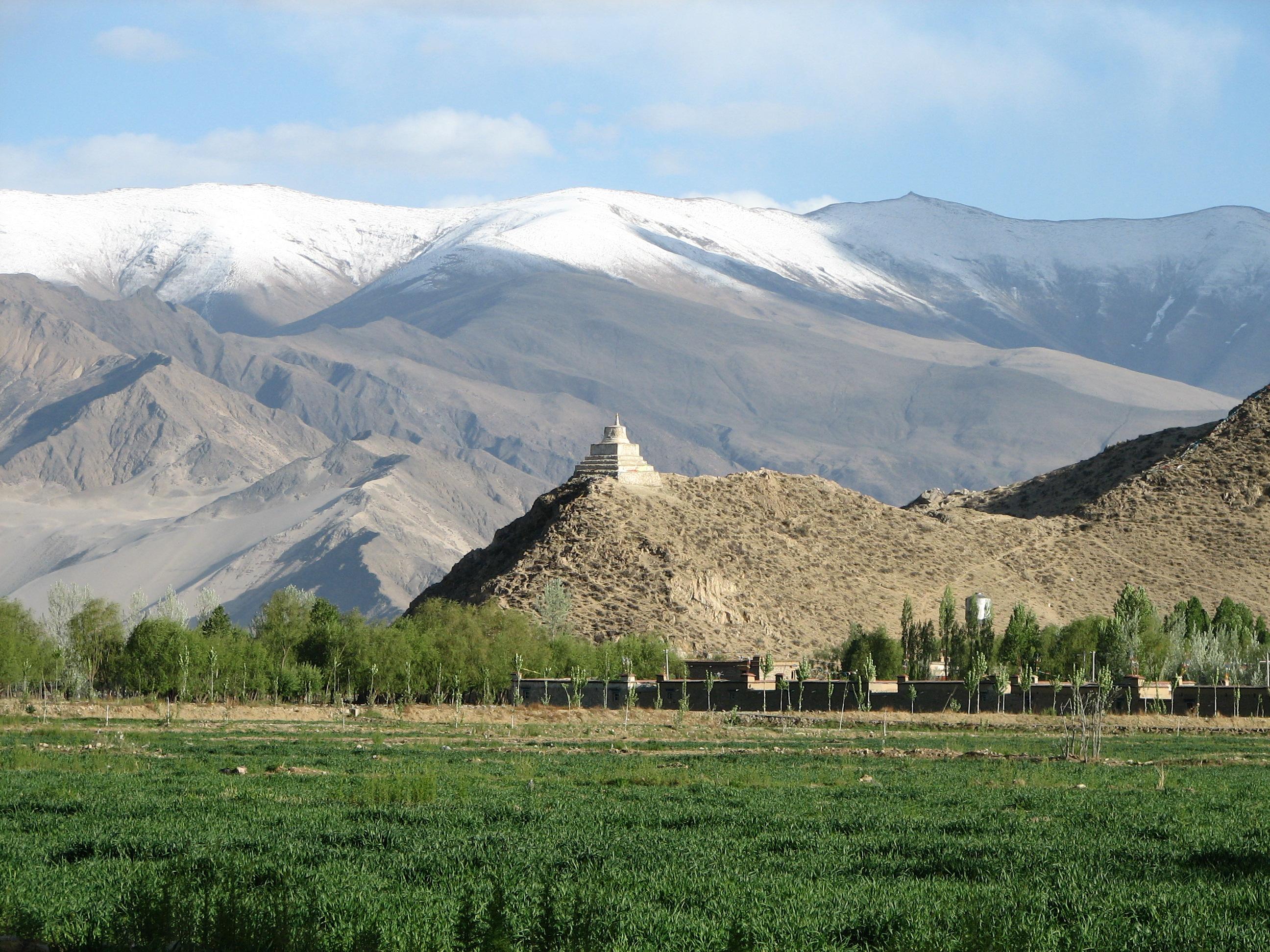 Ученые обнаружили почти 30 новых вирусов во льдах Тибета