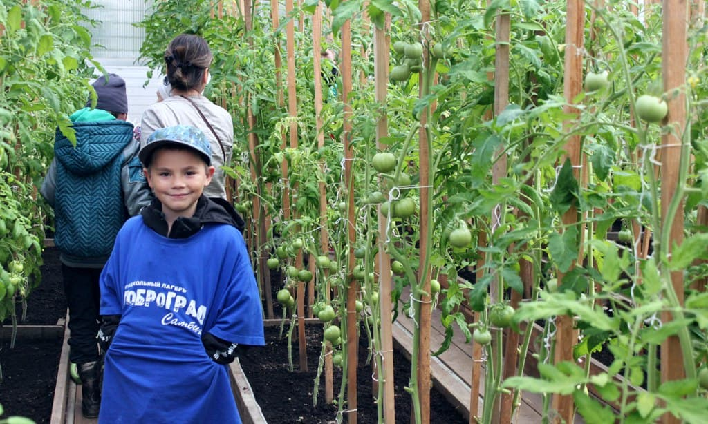 В Самбурге впервые школьники будут изучать аграрную науку с преподавателями тюменского вуза