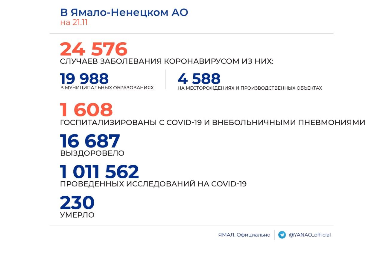 Суточный прирост заболевших COVID-19 на Ямале составил 199 человек